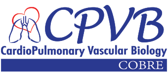 CardioPulmonary Vascular Biology Center